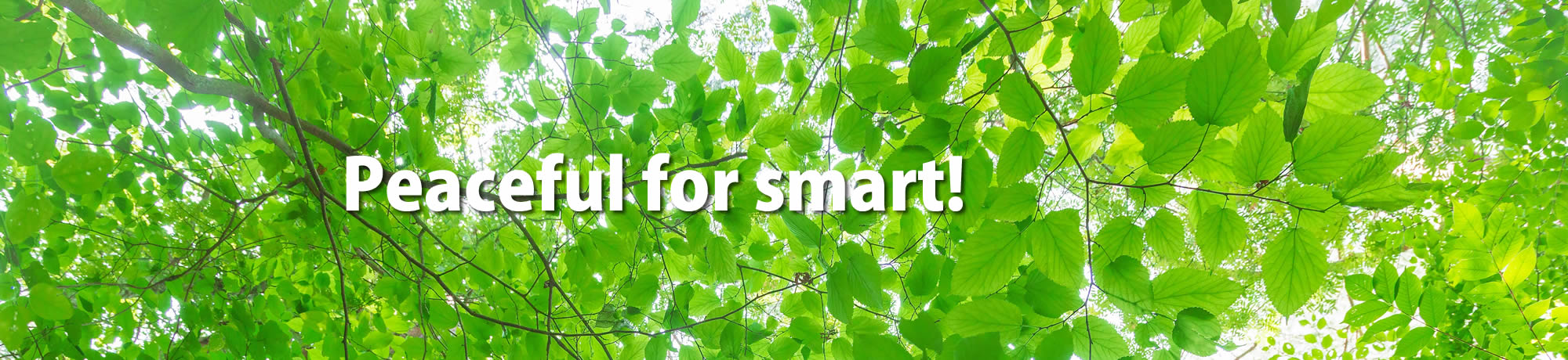 Peaceful for smart!